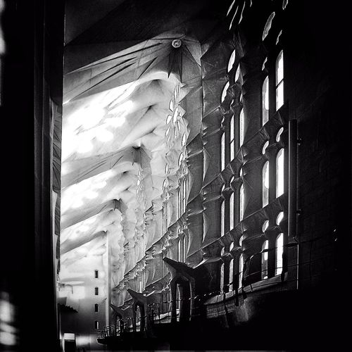 Black and white Sagrada Familia Windows