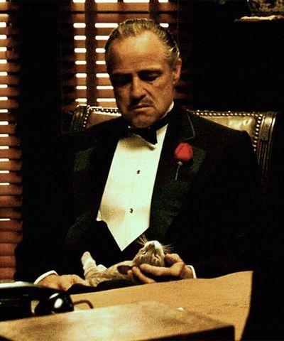 Mister Gentlemen