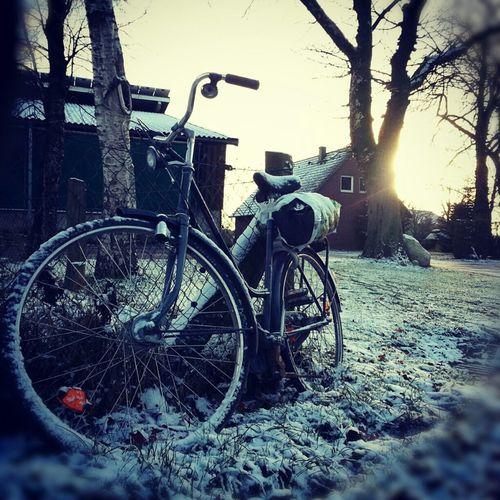 Sun Sonne Winter Bicycle Snow Photography Fahrrad Schnee Fotografie Pics By Mr_badabing
