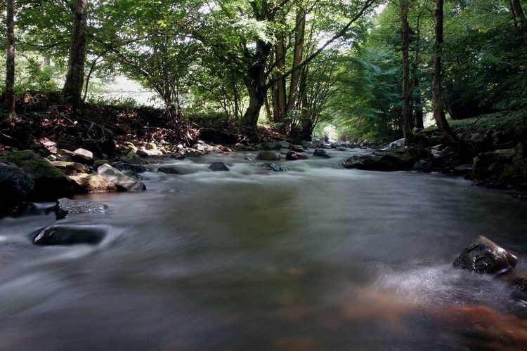 River Long