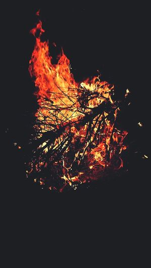 Flames & Fire Flame Night Orange Color Glowing Outdoors Fireball Heat - Temperature Burning Red Hot Blazing Bonfire Burning Wood Warmth In The Night Sticks And Twigs Light It Up Pitch Darkness