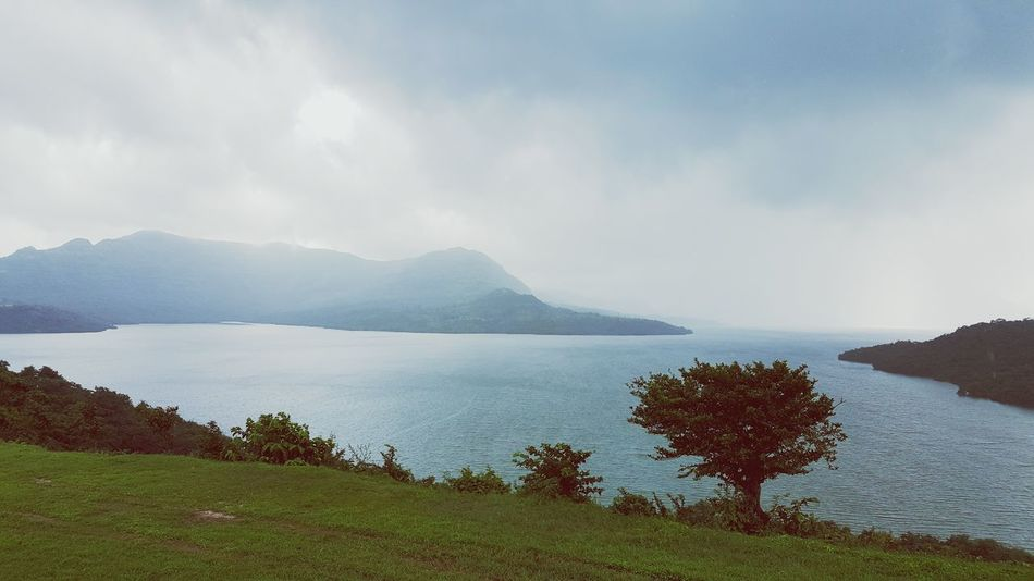 Nature Beauty In Nature Water High Water Level Tree And Sky Lake Green Tree Calm Rainy