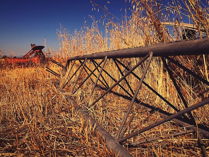 L. Jeffrey Moore Dry Field Outdoors Nature Day No People Plant Dried Plant Grass Red Agriculture Clear Sky Rural Scene Tree Sky Beauty In Nature The Week On EyeEm Lost In The Landscape Lost In The Landscape Perspectives On Nature