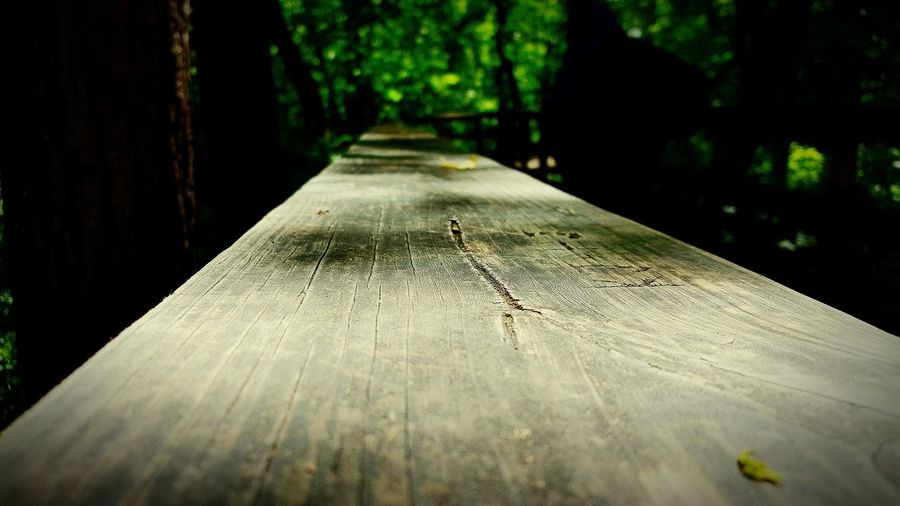 Wooden plank in