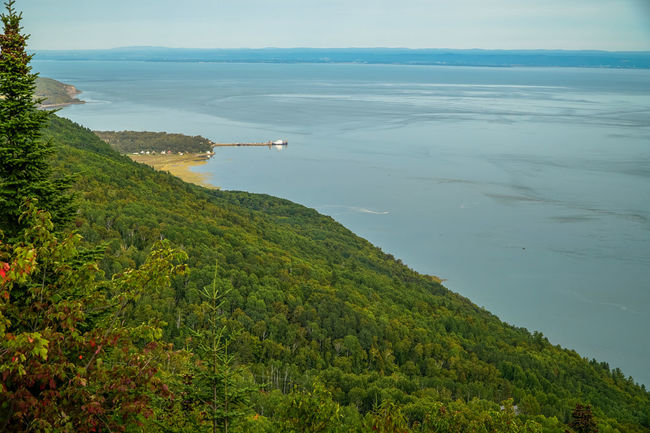Quebec Tourist Attraction  Travel Beach Beauty In Nature Canada Canada Coast To Coast Day Green Color High Angle View Horizon Over Water Mountain Nature No People Outdoors Scenics Sea Sky Tourism Tourism Destinations Tranquil Scene Tranquility Travel Destinations Tree Water