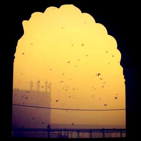 Repost of one of my earlier pics with some tweaking. Mosque Dehli Olddehli India jamamasjid