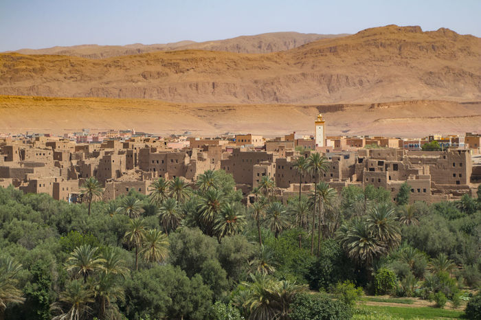 Ancient Civilization Architecture Arid Climate Building Exterior Built Structure Day Desert Growth History Landscape Mountain Mountain Range Nature No People Old Ruin Outdoors Palm Tree Plant Scenics Sky Tree
