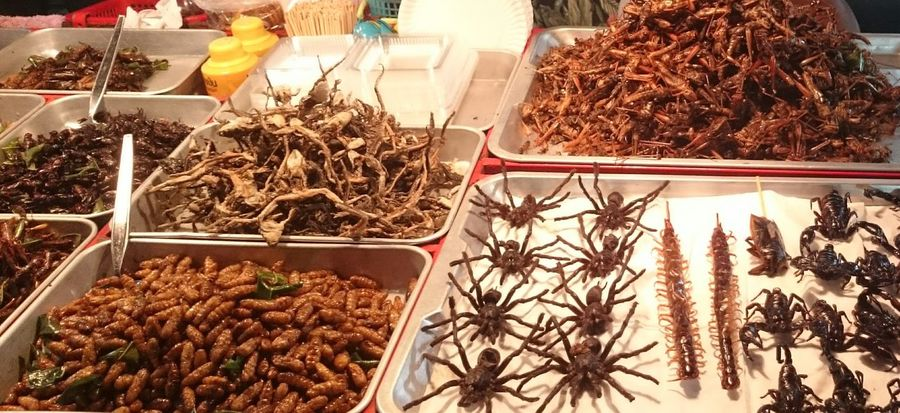 Market Market Stall Food And Drink Bangkok Thailand Bangkok Thailand No People Thailand Culture Bangkok Thailand Culture Thailand Travel Traveling Bug Bugs Bug Food Exotic Exotic Food Exotic Foods Adventure Eating Different New Dare Dare To Be Different Just Do It