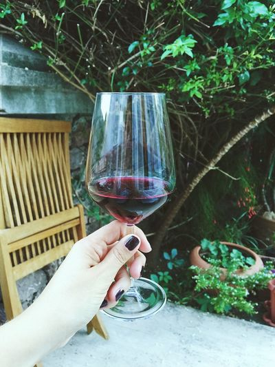 Cropped Hand Of Woman Holding Red Wine In Wineglass Against Plants