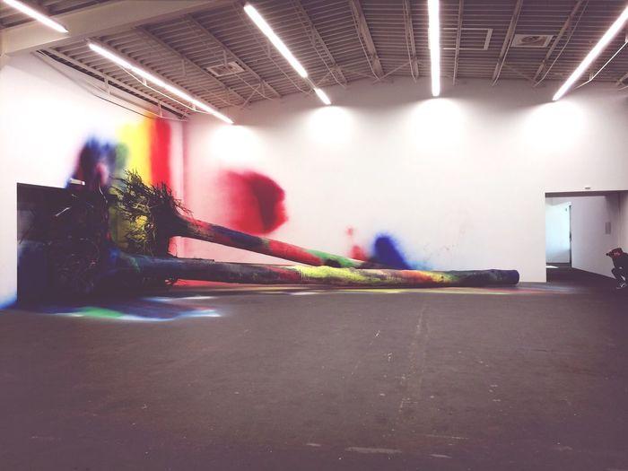 Wald Color Explosion Katharina Grosse