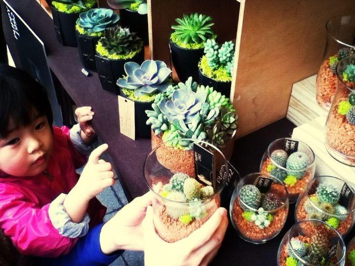Taipei Earth Day