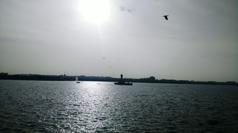 Tankbund Tanks Riverside River View Riverbank Riverscape Riverside Photography River Walk Riverfront River Life Riverboat Sunshine Sunset Lake View Sunsets Sunset_pics Riverbay Lakeshore Lake Life Lake Shore Bird Photography Birds🐦⛅ Birdfly Birdflying Bird In Flight