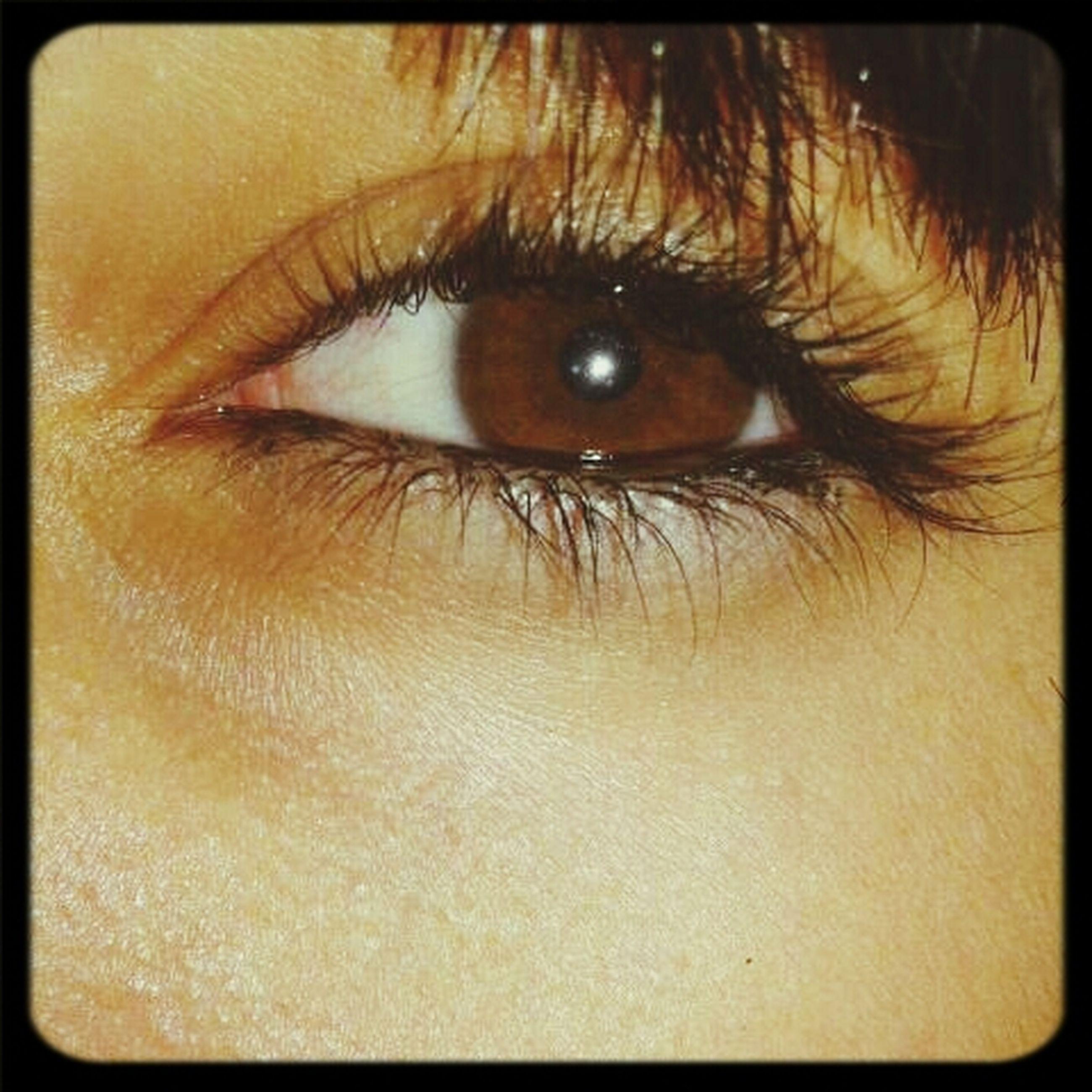 human eye, close-up, eyelash, transfer print, extreme close-up, eyesight, sensory perception, auto post production filter, indoors, full frame, human skin, part of, extreme close up, portrait, looking at camera, eyeball, iris - eye