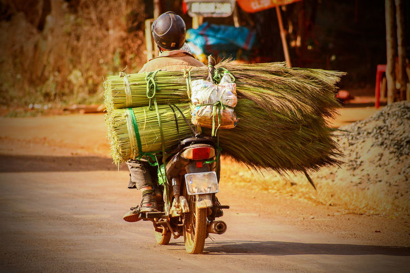 Iconic Vietnamese driver that can carry anything in the back of their motorbikes Lifestyle Travel Photography Street Photography Vietnamese Driver Defying Physics Iconic Images  Postcard Picture Wanderlust Asian  Asian Culture Way Forward Copy Space Countryside Vietnamese Culture The Week on EyeEm Transportation Mode Of Transport Land Vehicle One Person Real People Road Outdoors Adult Business Stories An Eye For Travel The Traveler - 2018 EyeEm Awards