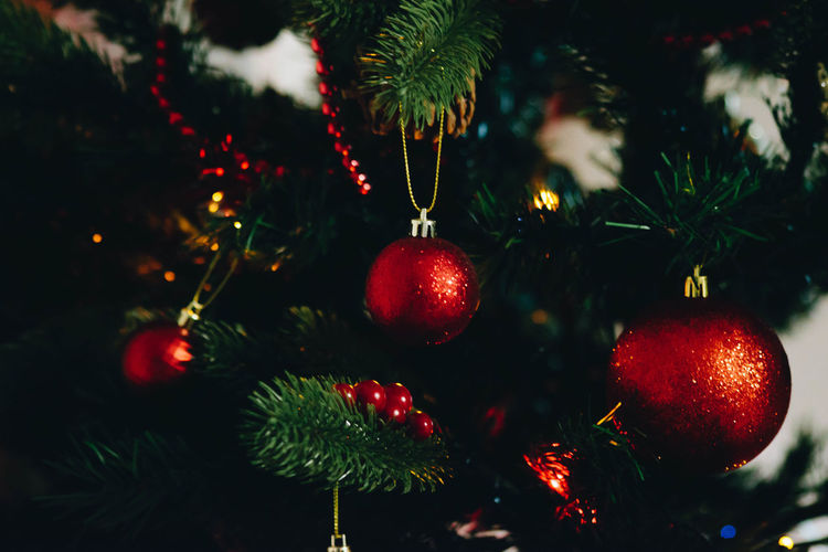 Holiday Christmas Celebration Christmas Decoration christmas tree Tree Christmas Ornament Decoration Red Hanging Focus On Foreground Close-up Holiday - Event No People Celebration Event Plant Christmas Lights Illuminated