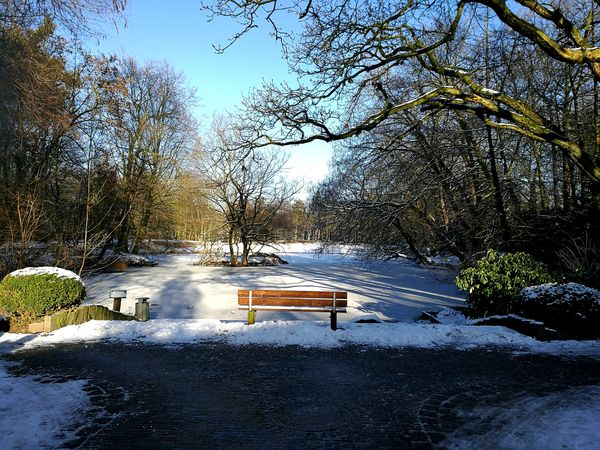 No People Calm And Quiet Outdoors Bench With A View Nature❤ Frozen Lake Snow Day ❄ Winter Trees ❄⛄ Sunshine ☀ Daytime Cold And Frosty