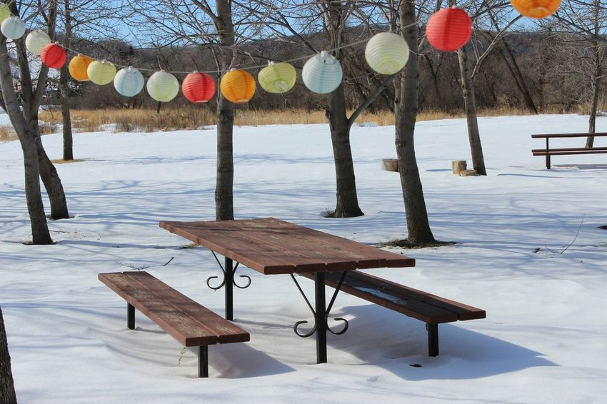 Campground Wintertime Summer Memories... Chinese Lanterns Deserted Shadows Snow ❄ Picnic Table Coloursplash Getting Inspired