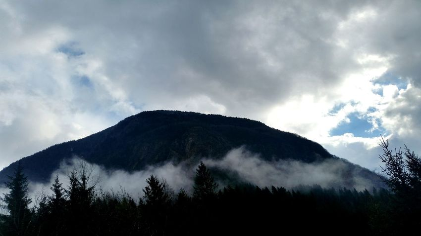 Cloud - Sky Mountain Tree Pinaceae No People Forest Outdoors Nature Fog Sky Landscape Beauty In Nature Day