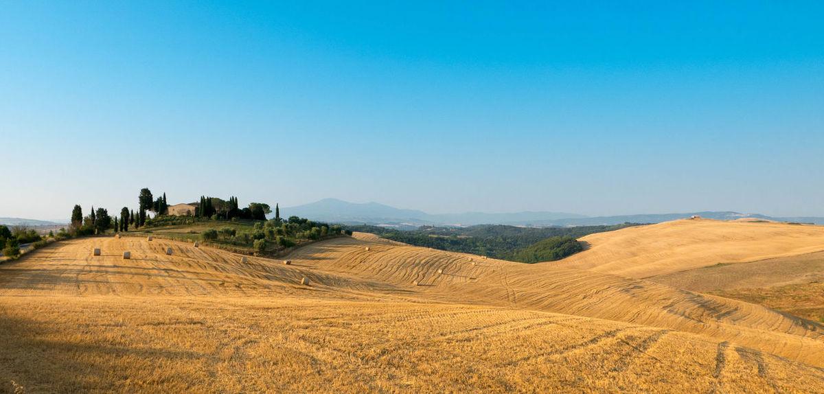 Blue Clear Sky Horizon Over Land Idyllic Landscape Morning Tranquil Scene Tuscany