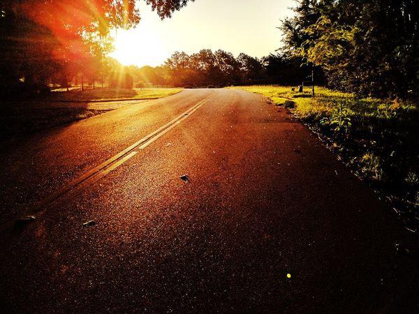 Morning Run Tree Sunset Road Sunlight Sky Close-up Sunbeam Asphalt Road Marking EyeEmNewHere