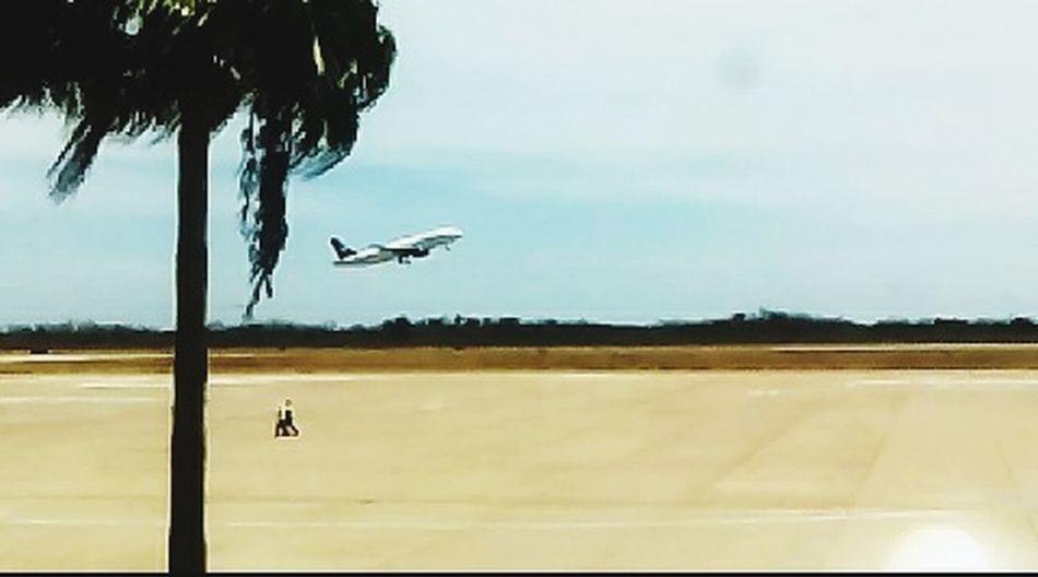 Feliz viaje mama. Espectacular Aeropuerto Vuelo Avion Despegando