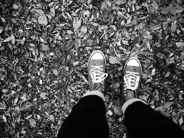 カメラの世界に迷い込んで2年半。思い返せば色々な事があったな。というかなぜこんな中途半端なタイミングで思い返してしまった、、、俺。 モノクロ Black & White Monochrome Blackandwhite モノクローム 白黒 靴 足元 足 枯葉