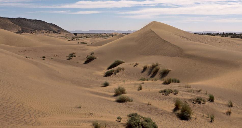 Desert Land Environment Landscape Sand Scenics - Nature Arid Climate Climate Sky Tranquil Scene Sand Dune Tranquility Nature Non-urban Scene Beauty In Nature Day No People Africa Hot Adventure Hiking Trekking Cloud - Sky Physical Geography Semi-arid