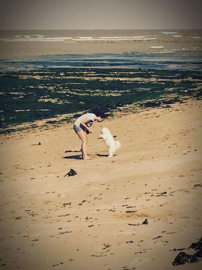 Holidays ☀ Sea And Sky On The Beach Life Is A Beach Ile D'Oleron Myprincess🐶🐶 Isis😍 Freedom Ilovemydog 🐶🐶☀️☀️😍