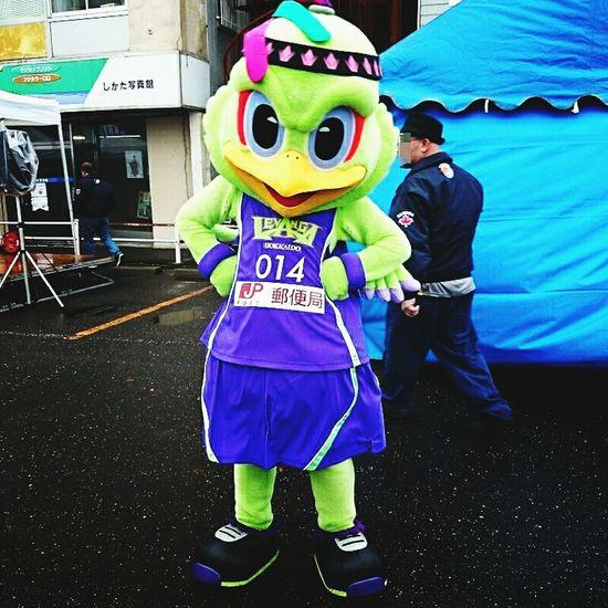 バスケットボールチーム、レバンガ北海道のマスコットキャラレバードくん(・ω・)。 Hokkaido,Japan Mascot Characters Of JAPAN Mascot Characters Of Sports Teams Basketball Team Mascot Characters