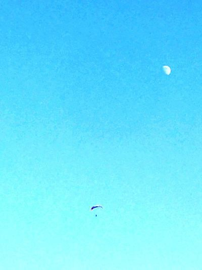 Moon Clear Sky Low Angle View Mid-air Nature Flying Blue Sky Half Moon Crescent Outdoors Beauty In Nature Day No People Astronomy