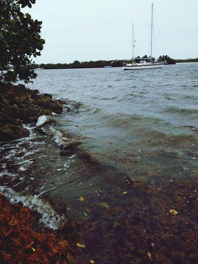 Nature Blue Bay