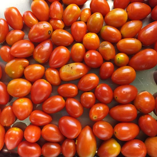 Vegetarian Food Vegetable Tomatoes Redtomato Fresh Produce Fresh And Clean