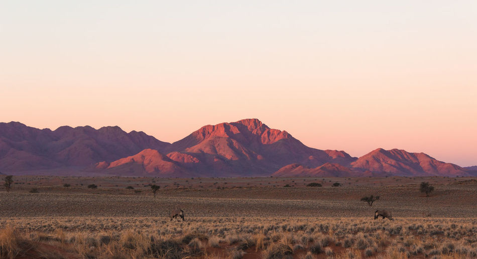 Scenic view of landscape and mountains against clear sky at sunset