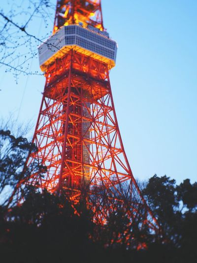 Tokyo Tower From My Eyes 日本2017年 Walking Outdoors My memory about you is here in Tokyo. Miss you Hazurekun