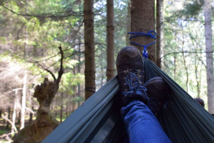 Low section of person wearing shoes in forest