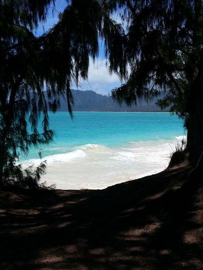 Blue Wave , Hawaii , Beach , Waimanalo Beach