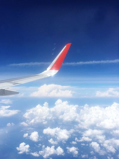 Sky Airplanewing