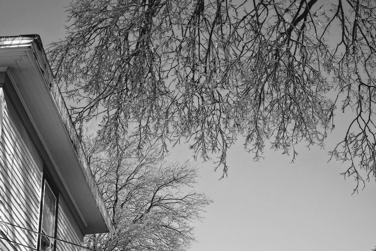 """Visual Journal January 17, 2017 Western, Nebraska - 15 and 16 January 2017 Ice Storm - Over the course of 15 and 16 January 2017, an upper-level storm system tracked from northwest Mexico into the central Plains. A seasonably moist low-level air mass present ahead of the upper-air disturbance surged north through the Great Plains, atop a sub-freezing, near-surface layer of air. The net result was a widespread ice storm which affected locations from the southern High Plains into the mid Missouri River Valley. This winter storm was unusual from the perspective that the predominant precipitation type was freezing rain with little in the way of observed snowfall. Over eastern Nebraska and southwest Iowa, ice accumulations ranged from 0.50-0.75"""" across southeast Nebraska to 0.10-0.20"""" in the Omaha Metro area. A Day In The Life Camera Work Extreme Weather Eye For Photography EyeEm Best Shots EyeEm Masterclass Frozen Nature FUJIFILM X-T1 Ice Age Icicles Icy Day Morning Light My Neighborhood Outdoors Photo Diary Photo Essay Photography Rural America Small Town Small Town Stories Visual Journal Winter Home Sweet Home EyeEm Best Shots - Black + White Wintertime"""