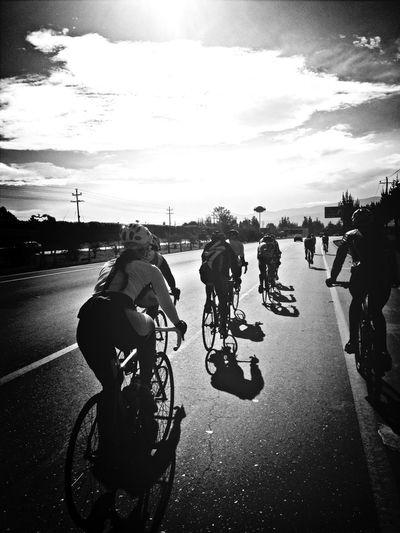 Le Tour De France Bikes Bikes Bikes Bikes Specialized Giant