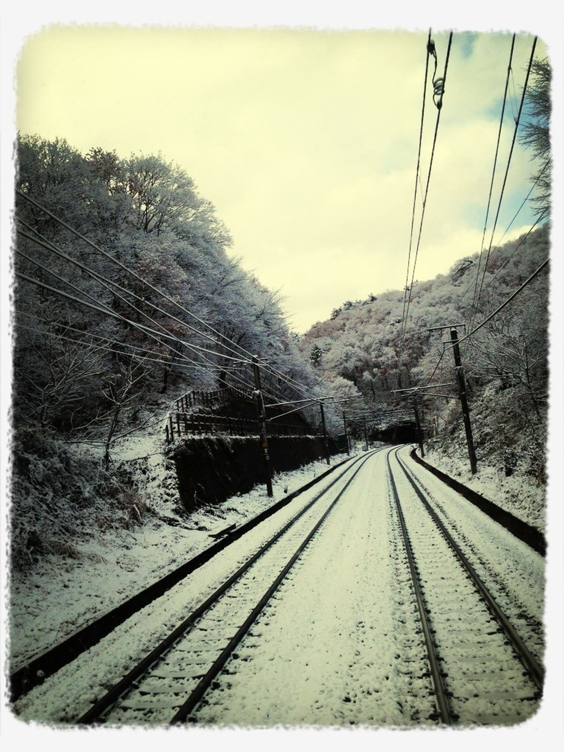 transfer print, auto post production filter, the way forward, railroad track, diminishing perspective, rail transportation, transportation, sky, connection, vanishing point, tree, built structure, long, power line, day, snow, electricity pylon, railway track, outdoors, architecture