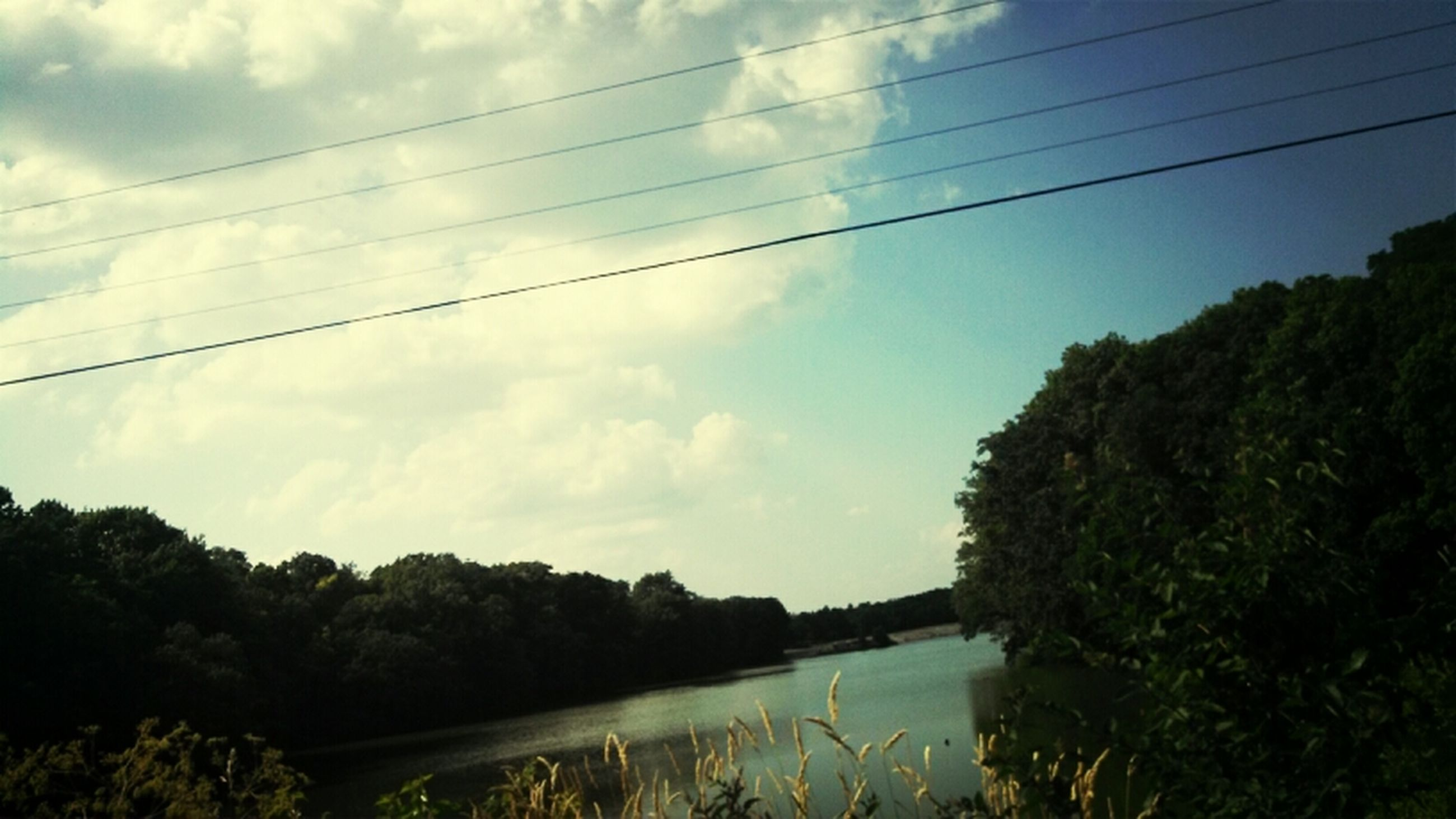 power line, electricity pylon, tree, sky, cable, connection, electricity, water, power supply, cloud - sky, tranquility, tranquil scene, nature, cloud, river, reflection, scenics, growth, power cable, beauty in nature