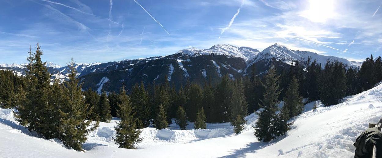 Skiing Saalbach EyeEm Best Shots EyeEmNewHere EyeEm Selects Winter Snow Cold Temperature Beauty In Nature Plant Sky Tree Mountain Sunlight