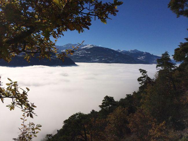 Wolkenmeer - Wallis - Schweiz Beauty In Nature Cloud Cloud - Sky Cloudcover Clouds And Sky Cloudscape Idyllic Landscape Majestic Mountain Mountain Range Nature Non-urban Scene Scenics Schweiz Sky Switzerland Tranquil Scene Tranquility Wallis