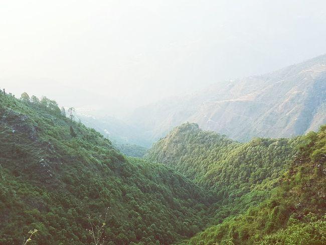Mountain Greenery India Mussoorie