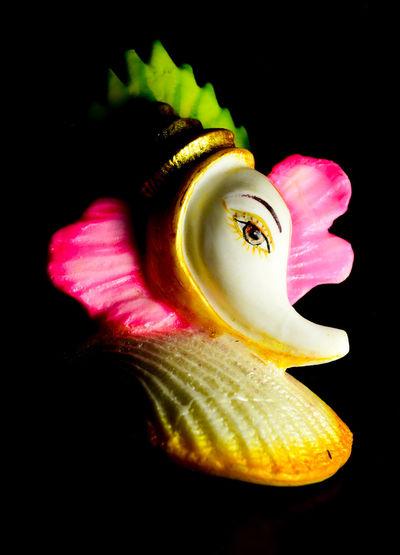 GaneshFestival2015 Nikondslr