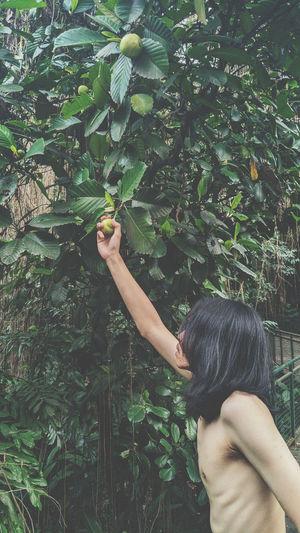 Shirtless man holding fruit hanging on plant