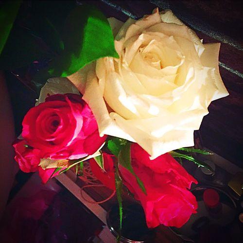 Messedupjournal Red White Roses Kas© Love