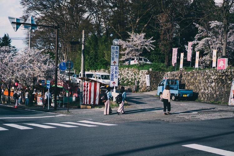 People walking on road in city