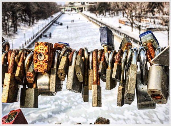 Canada Nature Winter Rideau Canal Ottawa Hanging Metal Variation Abundance Padlock No People Large Group Of Objects Outdoors Day Close-up Shades Of Winter