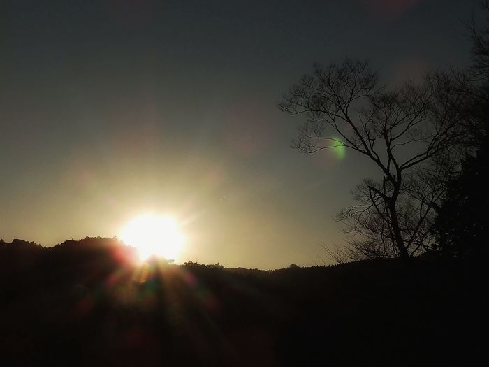 Sun flare, just a few minutes before sundown today.🌄 サンフレア~ 日没の数分前に..。| Sun Flare NoEditNoFilter 夕日♡ 無加工 Bare Trees Sundown Silhouettes Sundown On Lens Sundown Collection Beauty In Nature Outdoors Duskfall Olympusinspired Olympus Photography Full Frame EyeEm Gallery EyeEmNewHere EyeEm Best Shots - Sunsets + Sunrise EyeEm Best Shots - Nature From My Point Of View EyeEm Best Shots